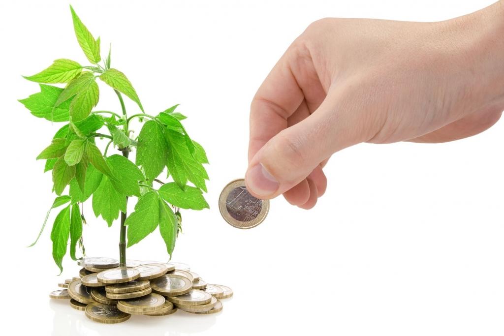 La_tete_hors_de_l_eau_webiste_financement_de_l_association