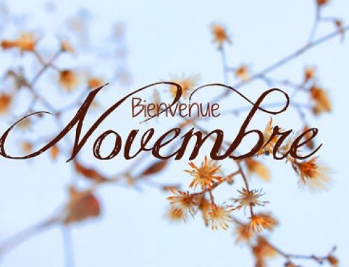 Que se passera t-il en novembre au NWL ?